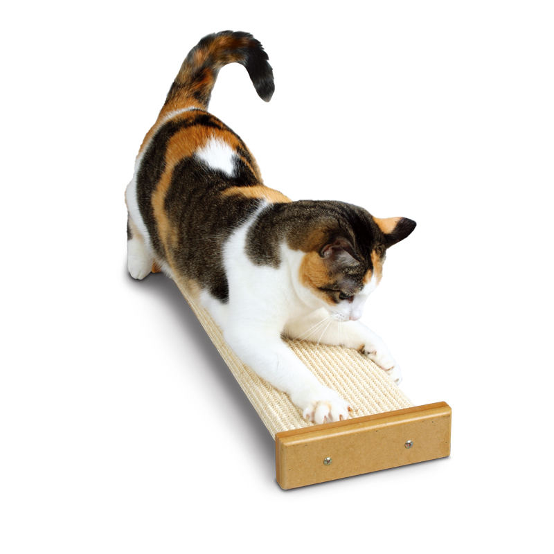 SmartCat Bootsie's Combination Scratcher