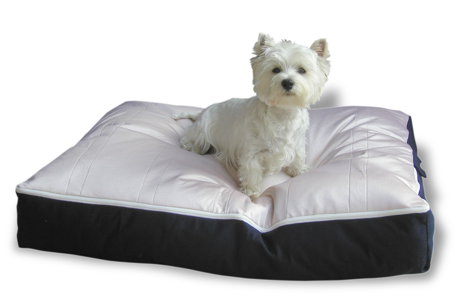 PoochPads Absorbent & Odor Resistent Dog Beds