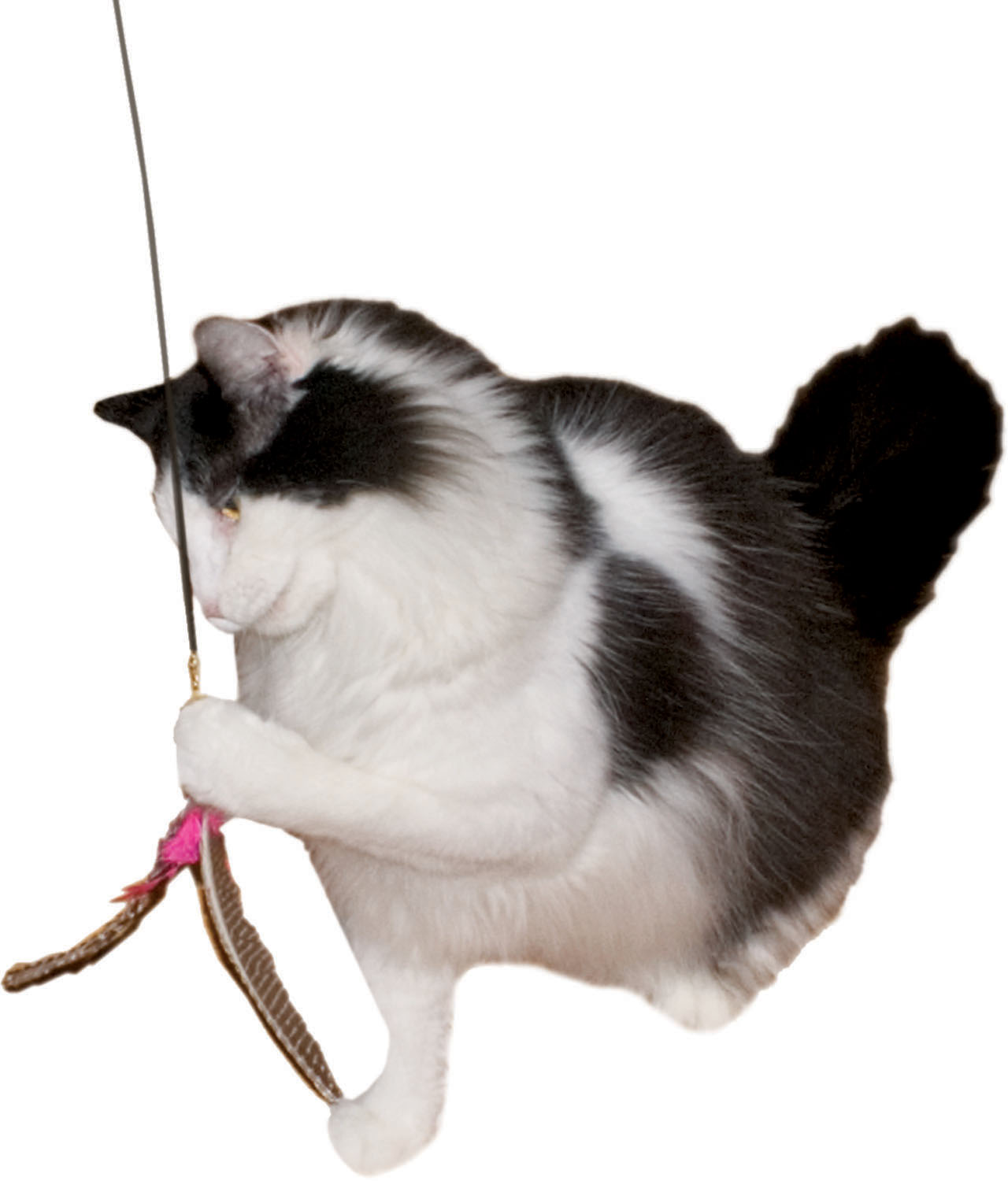 Imperial Cat Da Bird Wand
