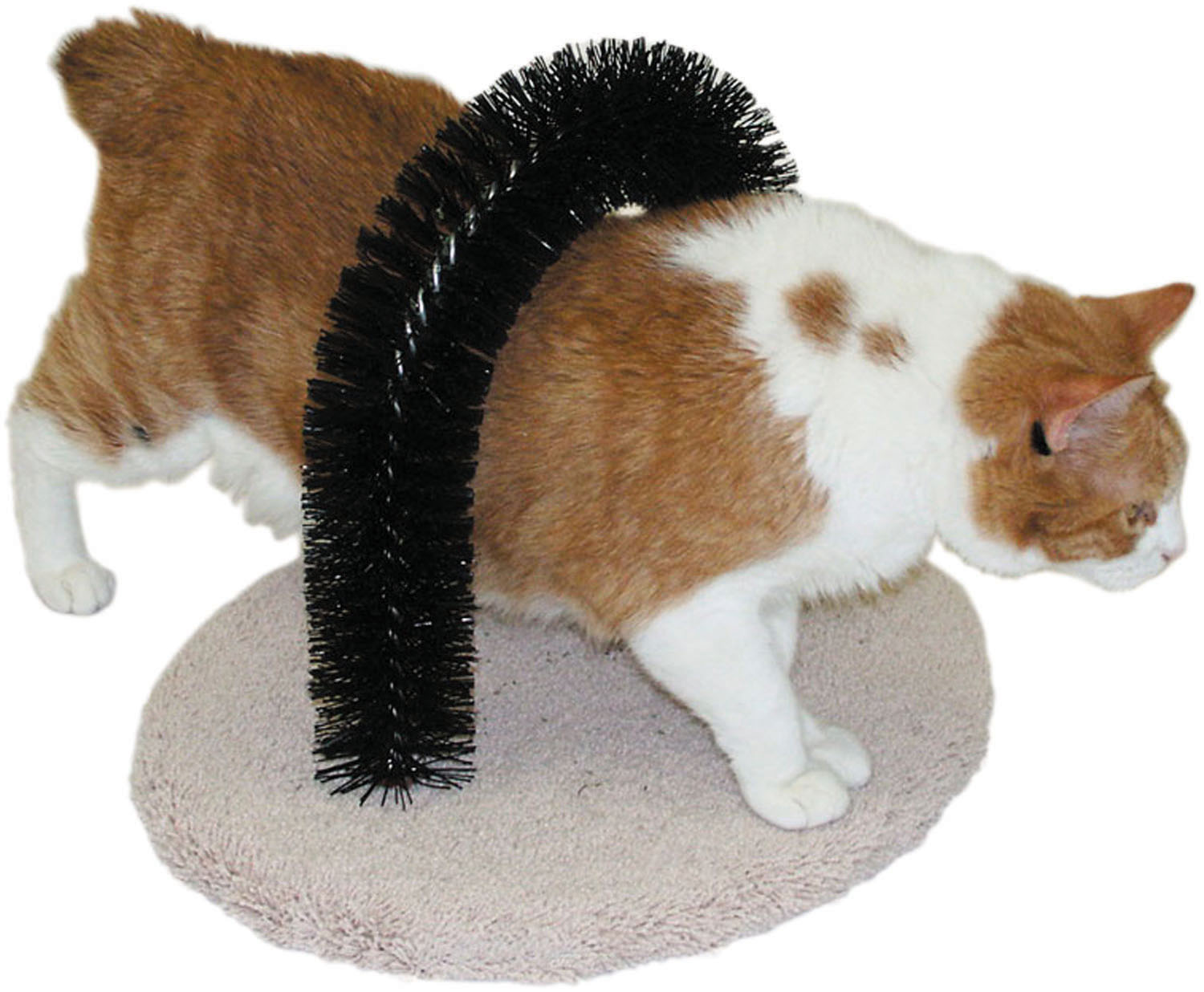 Imperial Cat Self Grooming Brush