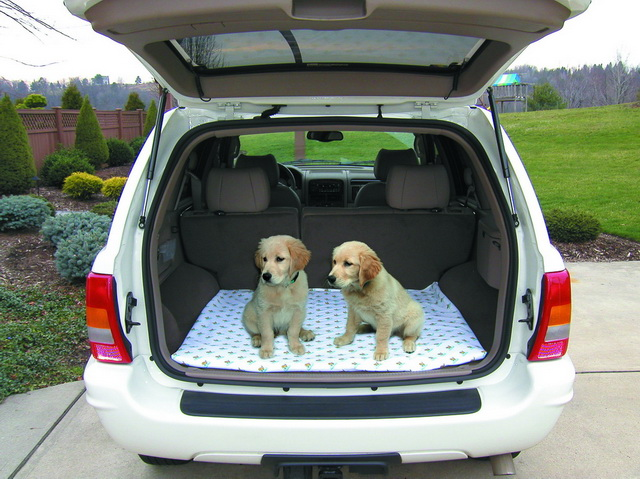 PoochPads SUV Pads